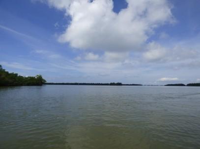 Estero Bay Scenic View